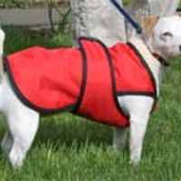 Underbelly Dog Coat Thumbnail