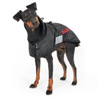 Back on Track® Canine Coat, Standard Thumbnail