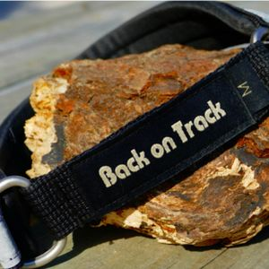 Back on Track® Canine Collar Thumbnail