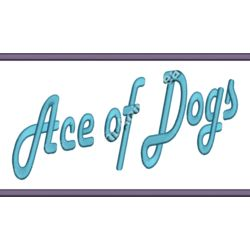 Ace Of Dogs Back Thumbnail