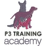 P3 Training academy Thumbnail