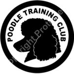 Poodle Training Club Thumbnail